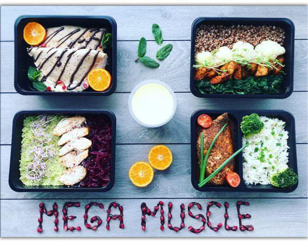 PLAN MEGA MUSCLE 1